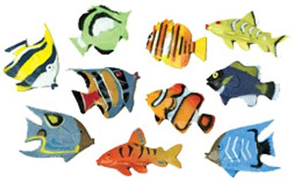 Tropical Fish Assorted 6 count