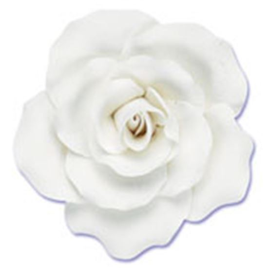 "Rose White Gumpaste Large 2.5"" x 2.5"" Each"