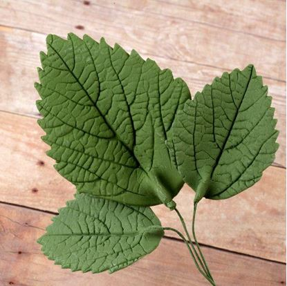 Hydrangea Leaves Green 5 count